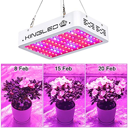 King Plus 1000w LED Grow Light Double Chips Full Spectrum with UV&IR for Greenhouse Indoor Plant Veg and Flower by KingLED (Image #2)