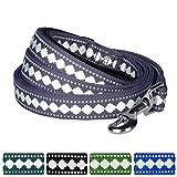 Blueberry Pet 5 Colors 3M Reflective Jacquard Dog Leash with Soft & Comfortable Handle, 5 ft x 3/4