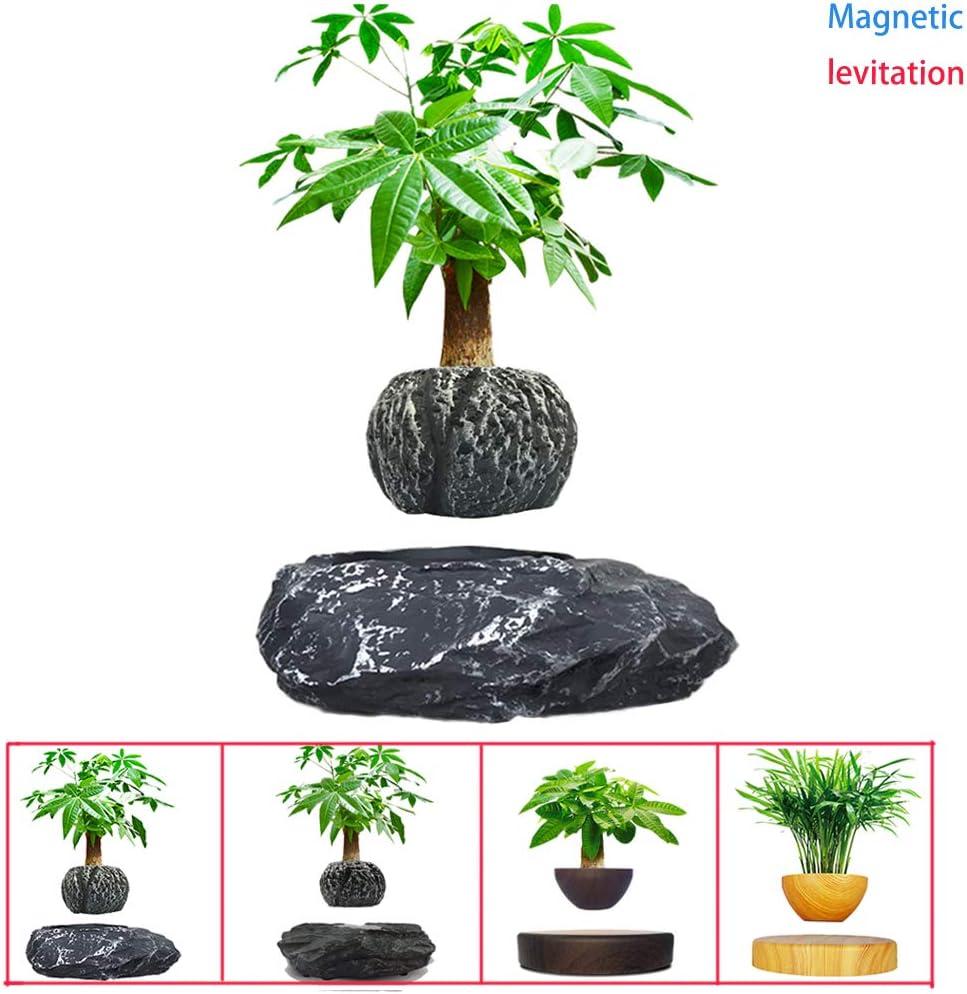 Magn/étique Levitating Air Bonsai Rotation Suspension Pot De Fleurs Plante en Pot L/évitation Tubs Bricolage Cr/éatif,4 D/écoration Saisonni/ère Air L/éviter Pot