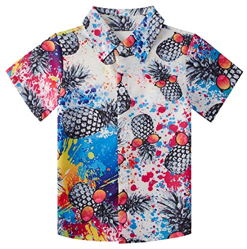 (RAISEVERN Little Boy's Button Down Shirts Hawaiian Pineapple Short Sleeve Cartoon Tropical Colorful Paint Dress Shirt for Toddler (2-3T))