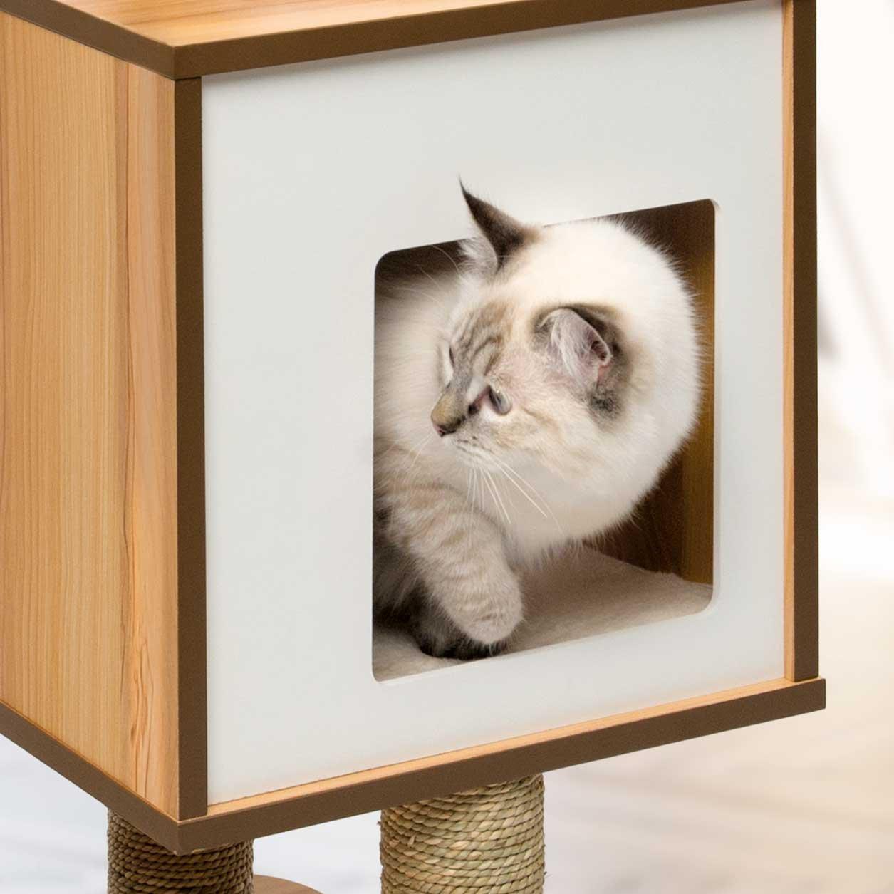 Amazoncom Vesper Cat Furniture Walnut VBase Pet Supplies - 22 cats living better life right now