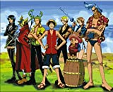One Piece luffy crew-DIY Painting by number kit 2014 New home decor unique gift 16x20 inch(framed)