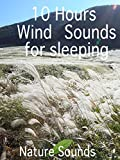 10 Hours Wind Sounds for sleeping