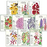"""Botanical Interests""""Deer Resistant"""" Flower Seed Collection - 10 Packets with Gift Box"""