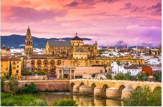 Puzzle de 1000 piezas de rompecabezas de madera Córdoba España Mezquita Catedral y Puente Romano Regalo para niños: Amazon.es: Hogar