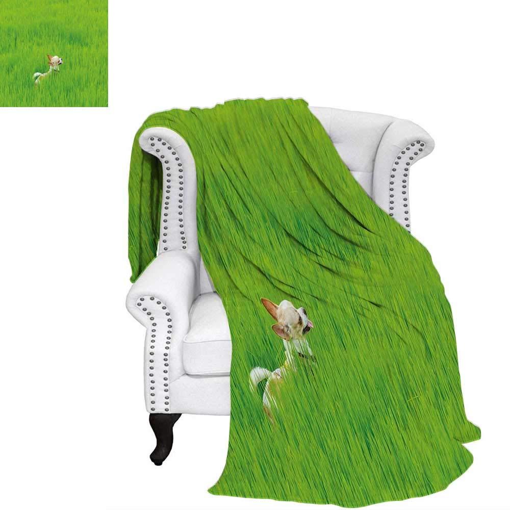 Bedding & Linen Home Textiles Natureblanket Throw blanketPlayful Chihuahua Puppy Dog in The Grass Cute Animal Pet Best Friend Pictureoutdoor Blanket 50x30 Fern Green Cream