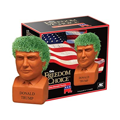 Chia Pet Decorative Pottery Planter, Easy to Do and Fun to Grow, Novelty Gift, Perfect for Any Occasion, Donald Trump : Garden & Outdoor
