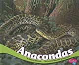 Anacondas (South American Animals) by Gillenwater, Chadwick (2012) Library Binding