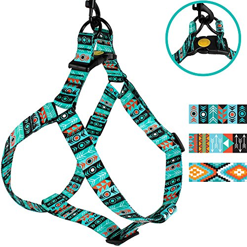 CollarDirect Adjustable Dog Harness Tribal Pattern Step-in Small Medium Large, Comfort Harness for Dogs Puppy Outdoor Walking (Pattern 1, Small)