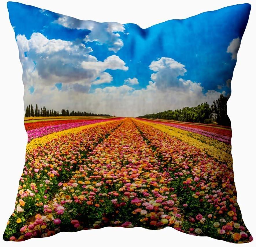 LinUpdate-Store Fundas de cojín, Field Strip Spring Magnífico Concepto de ranúnculos de jardín con Flores Multicolores Moderno
