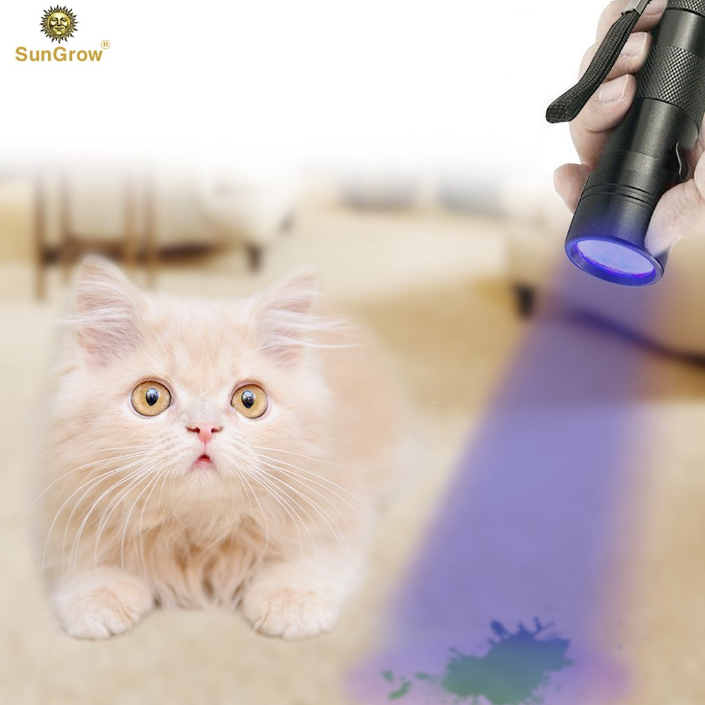 SunGrow Pet Urine & Stain Flashlight - Easily detect & clean urine spots: No ...
