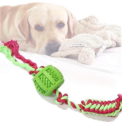 dog knotting