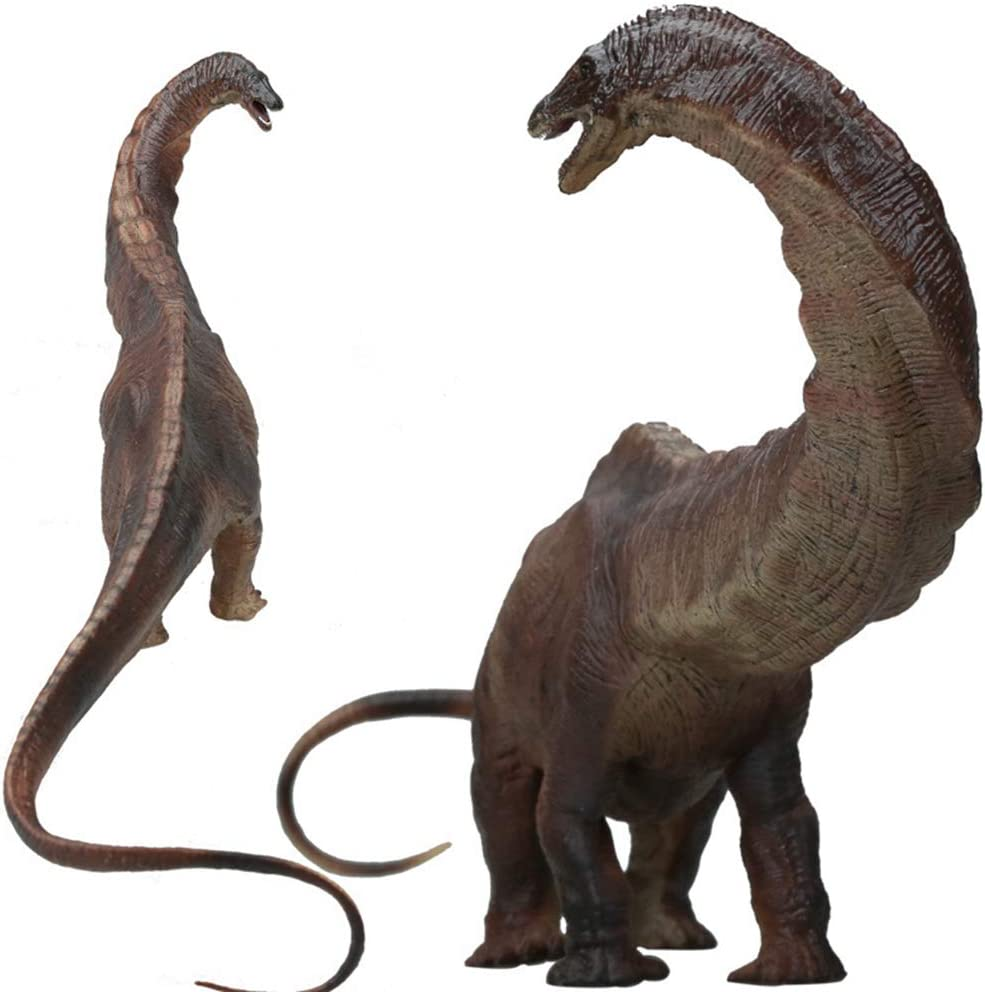 "HiPlay 17.7"" Apatosaurus Dinosaur Figure-Realistic Design with Amazing Detail Hand-Painted Big Size Dinosaur Model HP-D061"