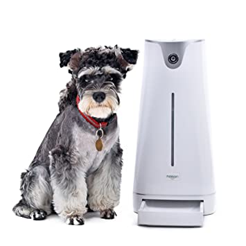 PAWZ Road dispensador pienso Gato/Perro dispensadores automáticos de Comida con Webcam & Wi-