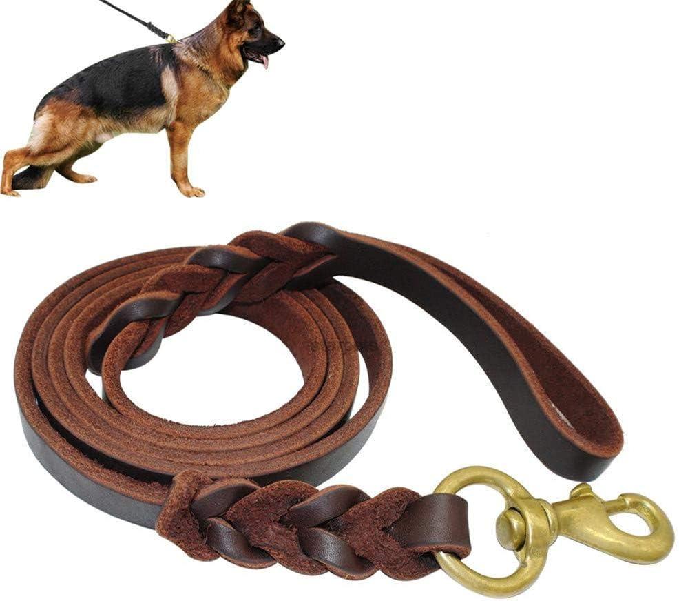 Rysmliuhan Shop Hundeleine Hundeleine Große Hunde Leine Für Große Hunde Slip Lead Für Hunde Hund Führt Rutschseil Dog Slip Lead Hundetraining Lead Hundeleine Bequem 1 5m Küche Haushalt