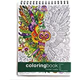 Adult Coloring Book, Forest Trails + Colorable Calendar