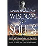 Wisdom of Souls: Case Studies of Life Between Lives From The Michael Newton Institute
