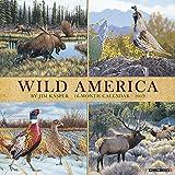 Wild America 2019 Wall Calendar