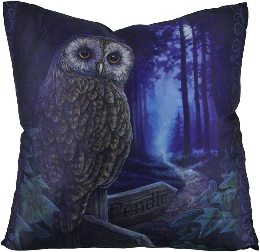 Zeckos Lisa Parker 'Way of The Witch' Decorative Fantasy Owl Throw Pillow
