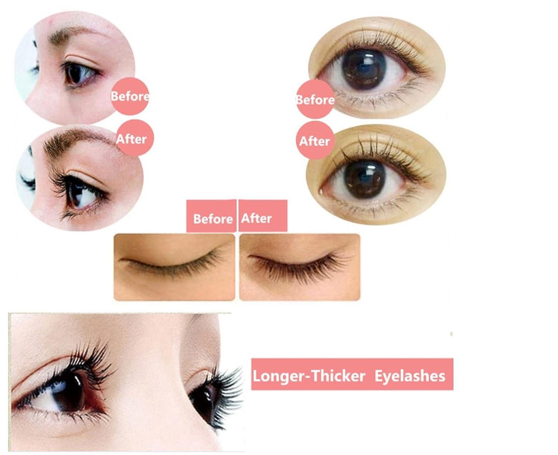 Amazon.com: Chinese Herbal Medicine Eyelash Enhancer Eyebrow ...
