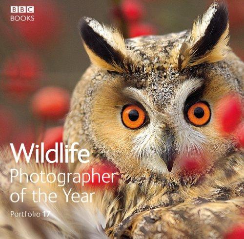 Wildlife Photographer of the Year, Portfolio 17
