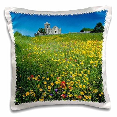 danita-delimont-flowers-wildflowers-at-presidio-la-bahia-goliad-texas-usa-us44-ldi1062-larry-ditto-p