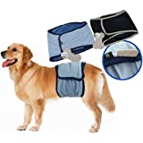 HUAhuako, Puppy Dog Diaper Male Small Large Breeds Reusable Washable Pants Pet Product Gift for Family FriendsPuppy Dog Diaper Male Small Large Breeds Reusable Washable Pants Pet Product