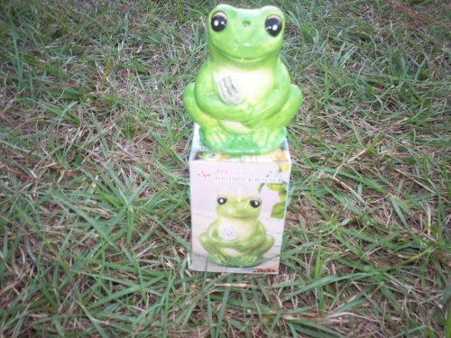 (Frog Toothpick Holder by L.A.M.B.)