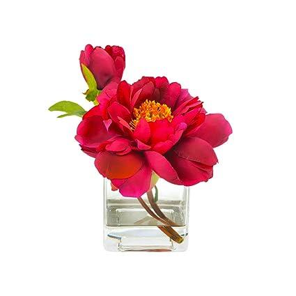 Amazon Creative Displays Cdfl1195 Fuschia Peony In Glass Vase