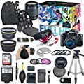 Canon EOS Rebel T6i DSLR Camera Deluxe Video Creator Kit with Canon EF-S 18-55mm f/3.5-5.6 IS STM Lens + Wide Angle Lens + 2x Telephoto Lens + Flash + SanDisk 32GB SD Memory Card + Accessory Bundle