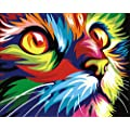 Diy Oil Painting Newsight Paintworks Paint By Number For Kids And Adults 16 X 20 Color Cat