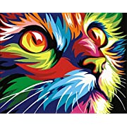 """DIY Oil Painting Newsight Paintworks Paint by Number for Kids and Adults (16"""" x 20""""Color Cat)"""