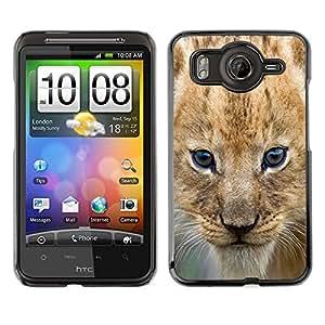 Qstar Arte & diseño plástico duro Fundas Cover Cubre Hard Case Cover para HTC Desire HD / G10 / inspire 4G( Lion Cub Puppy Wild Cat Africa Safari Brown Eyes)