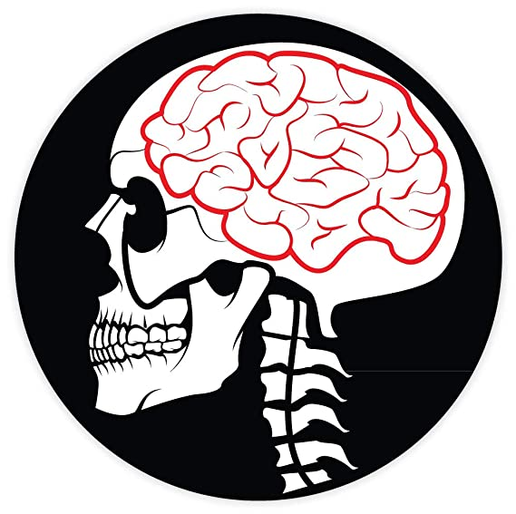 Amazon Com Skull With Brain Sticker Decal 4 X 4 Everything Else