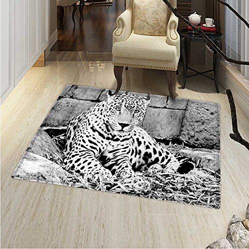 Black White Anti-Skid Area Rug Jaguar Wild Big Cats Theme Feline Dots Body Fur Jungle Tiger Leopard Soft Area Rugs 4'x6' Black White