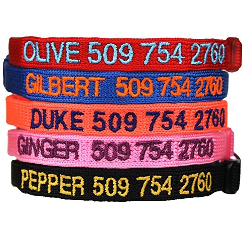 Personalized Buckle Collar - 2