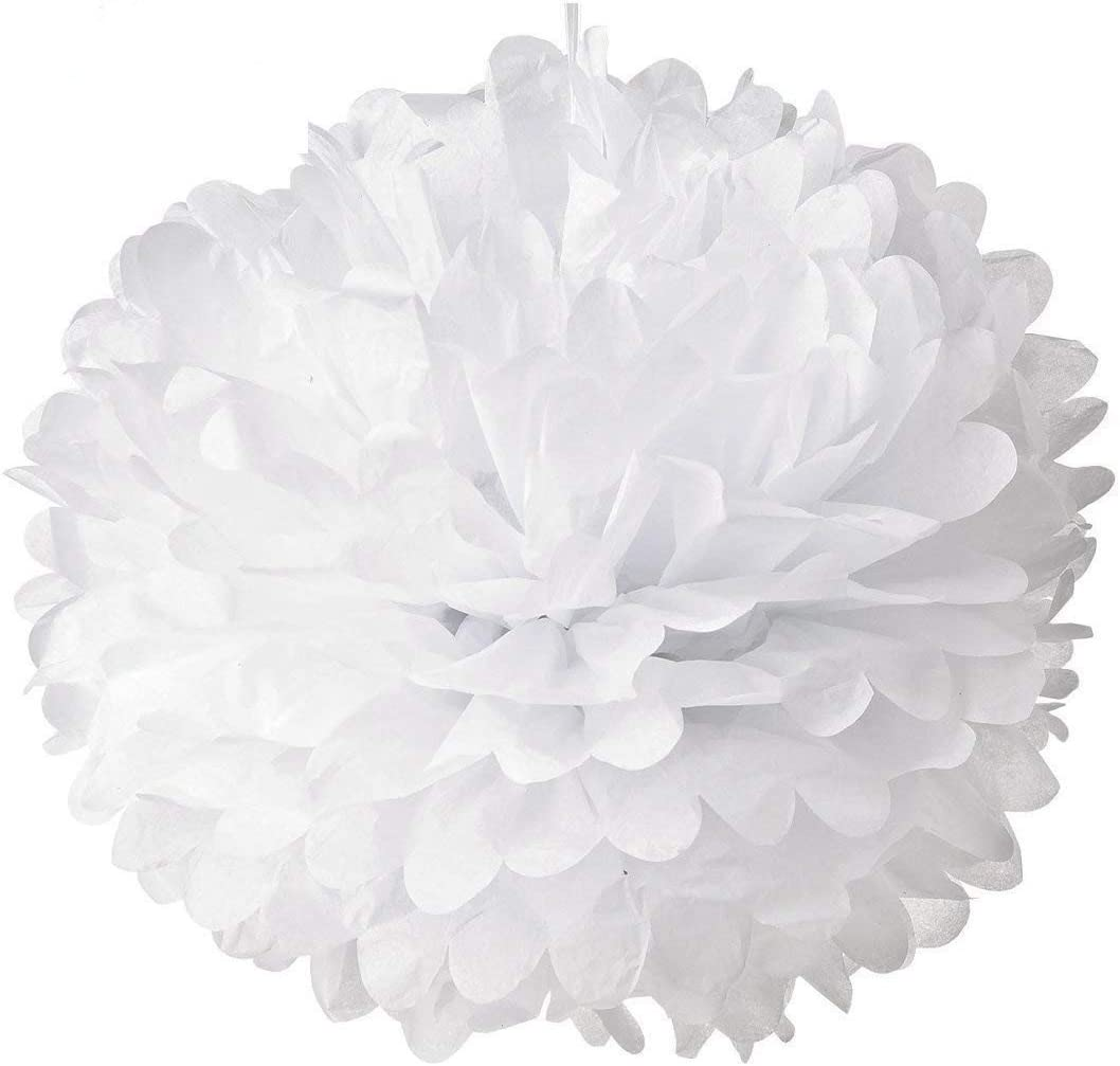 Hmxpls 10pcs White Tissue Hanging Paper Pom-poms, Flower Ball Wedding Party Outdoor Decoration Premium Tissue Paper Pom Pom Flowers Craft Kit