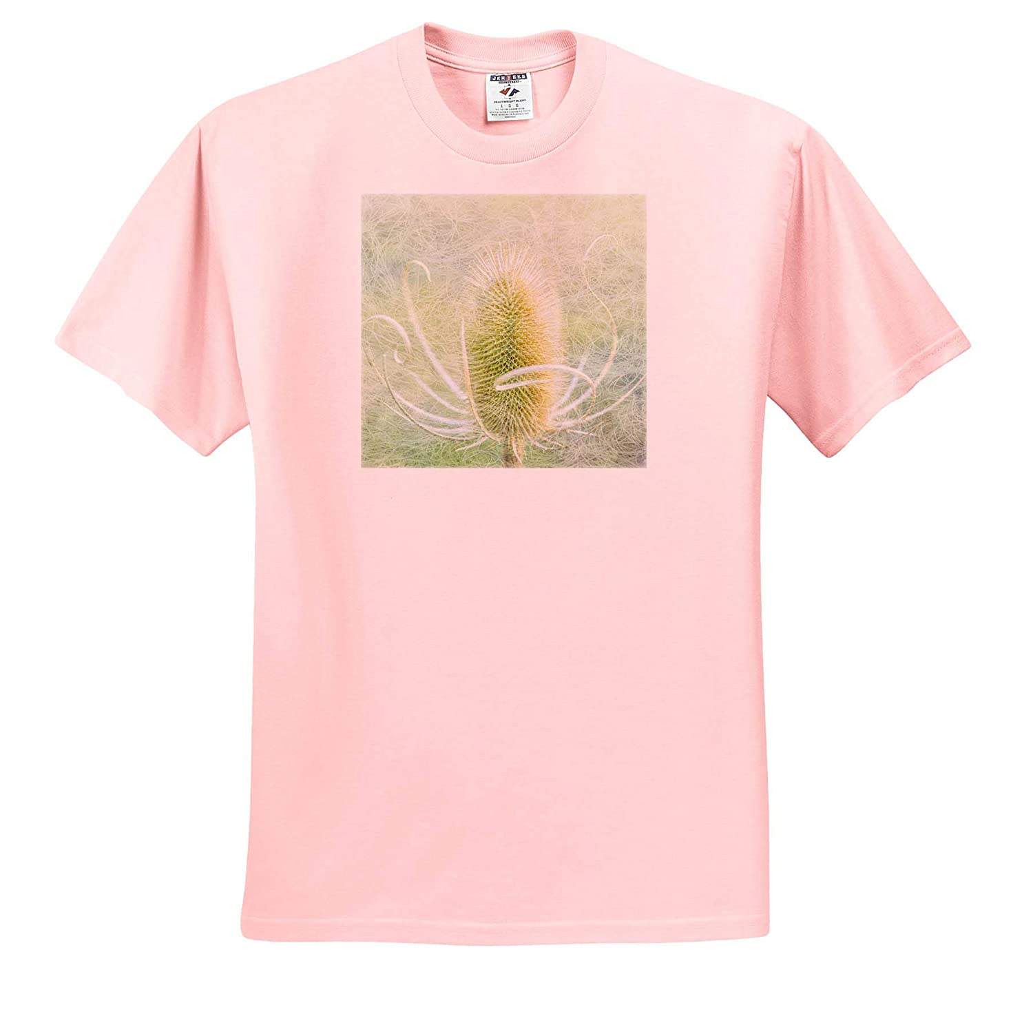3dRose Danita Delimont Natural Patterns Abstract of Teasel Plant - Adult T-Shirt XL ts/_314976