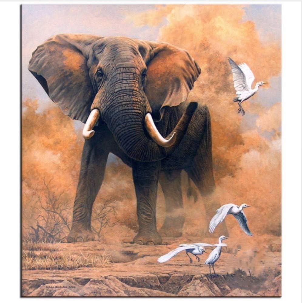 WACYDSD Pintura por Números Elefante Pájaro Blanco Pintura Al Óleo ...