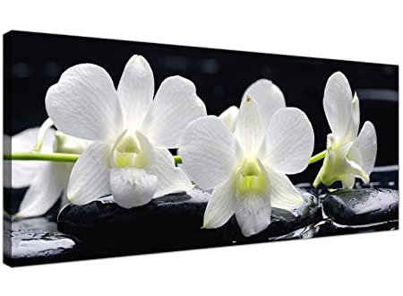 Large black and white canvas prints of orchid flowers floral wall art 1051