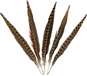 Pheasant Feathers,Hgshow 10Pcs Plume Products Assorted Natural Feather,About 12-14 inches,30-35cm Long