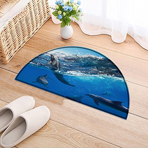 NALAHOMEQQ Half-round Rubber Back Coir Doormat Oceanview with sunlight. A flock of playful dolphins swimming underwater and one of them leaping out from big Living Room(31.5x19.7 INCH)