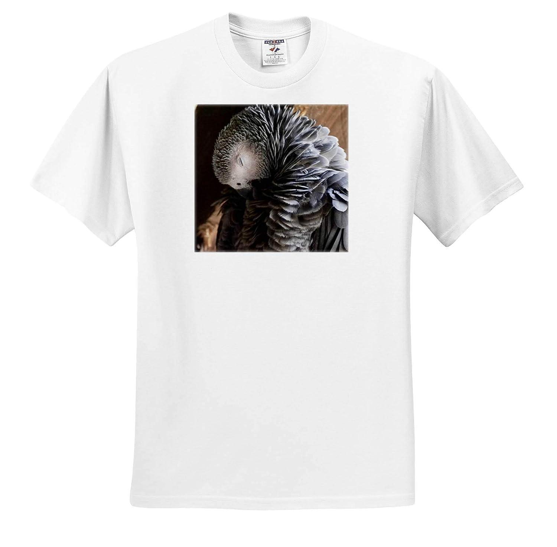 T-Shirts Adorable Portrait of a Parrot Animal Photography 3dRose Sven Herkenrath Animal