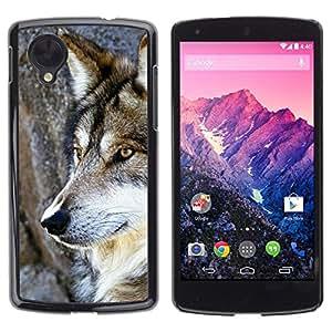 Design for Girls Plastic Cover Case FOR LG Nexus 5 D820 D821 Wol Wild Tree Nature Dog Animal Brown OBBA