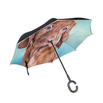 ALAZA La Prueba de Doble Capa Paraguas invertido Coches inversa Paraguas Vizsla Húngaro Brown Perro a
