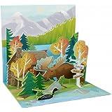 Pop Up 3D Geburtstag Glückwunsch Grußkarte PopShot Gebirge Berge Natur Tiere 13x13cm