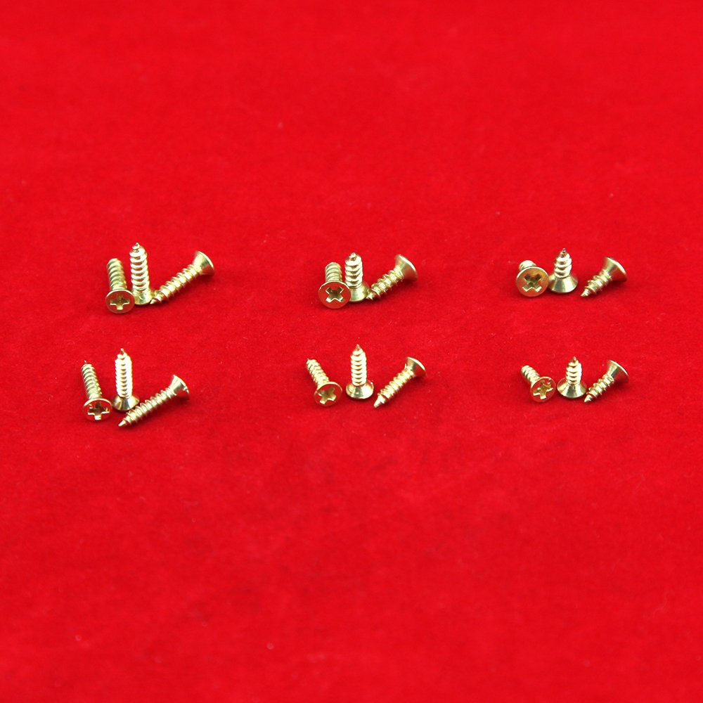 Tornillos pequeños para bisagras pequeñas Tornillos autoperforantes antiguos Multiuso DIY tornillos miniatura Set 1200pcs oro: Amazon.es: Bricolaje y ...