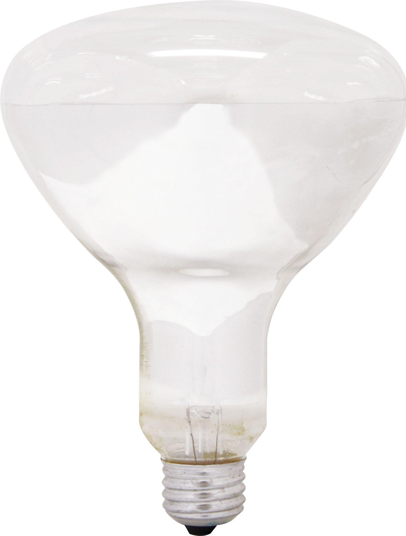 GE Lighting 47724 250-Watt R40 Light Bulb with Medium Base, 6-Pack