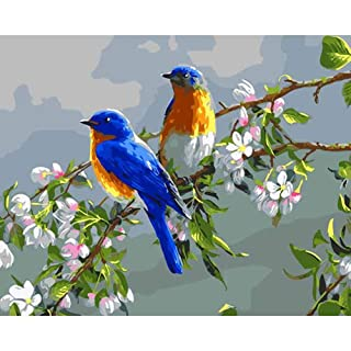 Paintyty Parrot DIY by Numbersoil Paint Painting Coloring Frameless Handmad Magpie Wall Art Canvas Coloring by Numbers for Home Decor