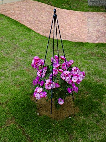"Garden Plants Obelisk Climbing Plants Structure Trellis Garden Supports Height 47"", Black Pack of 4 (Structures Trellis)"